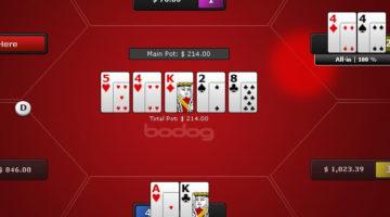 bodog poker review
